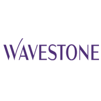 Wavestone decided to trust Powell 365