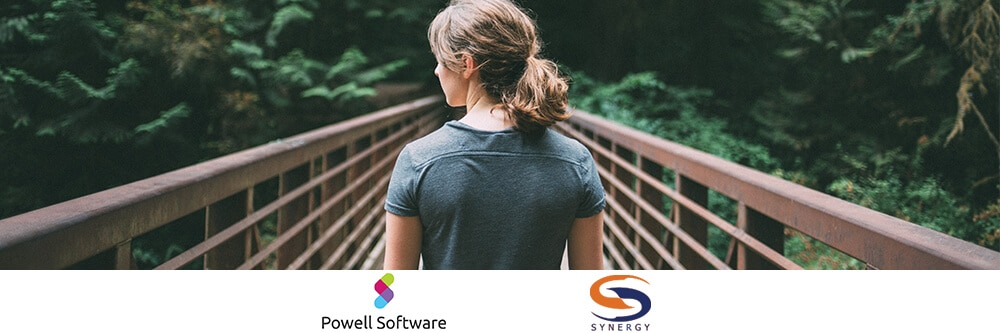 webinar Powell 365